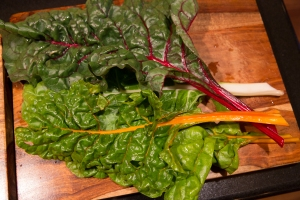 Sturdy leaves of chard. Note the colorful stems.